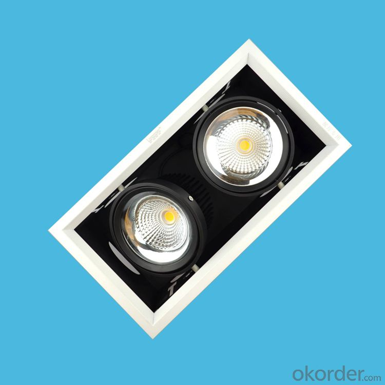 Indoor lighting AR111 LED Grille Spotlight Double-headed 2*20W