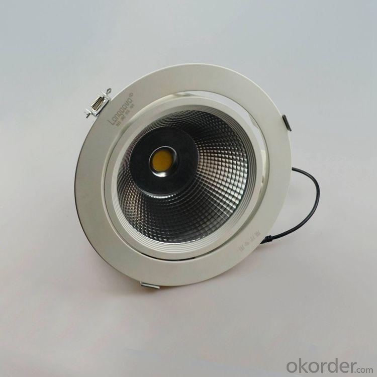 40W LED Trunk lamp,Led COB adjustable angle Downlight