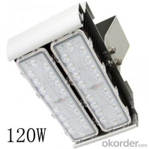 Module design provided easy maintenace for cold storage lighting