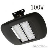 100LM/W 100W LED tunnel light IP67 high power outdoor lighting