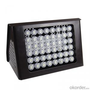 Wallpack Light      C2420-AW