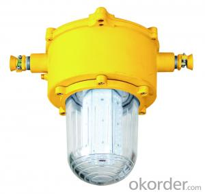 Mining Explosion Proof and Intrinsically Safe LED Roadway Lights(G)