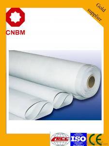 SBS/APP Modified Bitumen Waterproof Membrane- Hot Sell In South East Asia