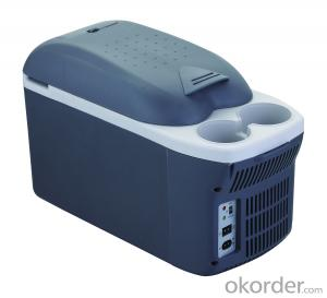 Thermoelectric Cooler and Warmer Mini Fridge 8L