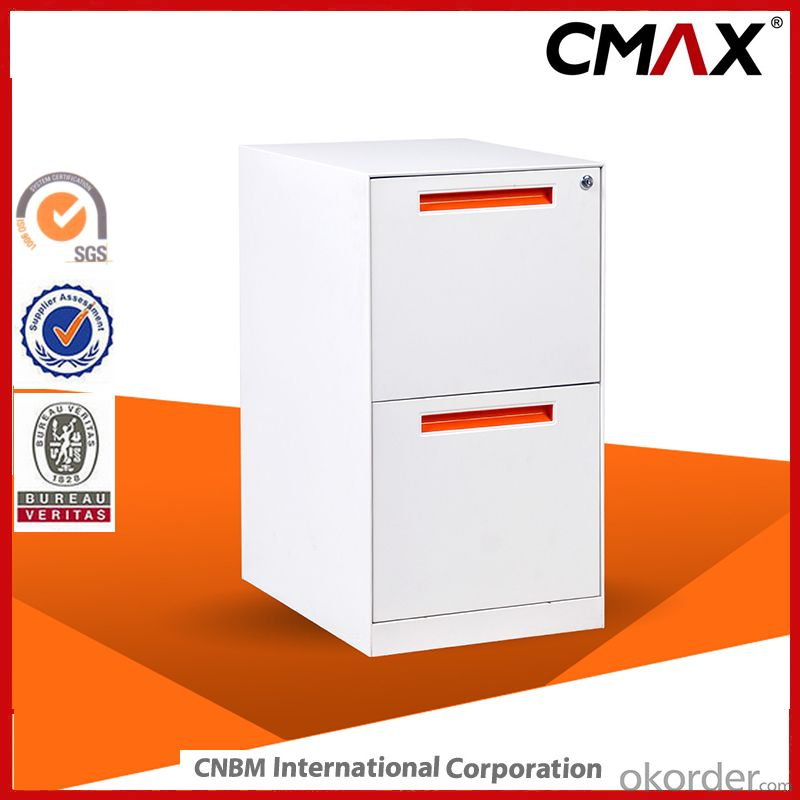 Vertical Filing Cabinet with 2 drawers Office Funicerue Metal Cabinet