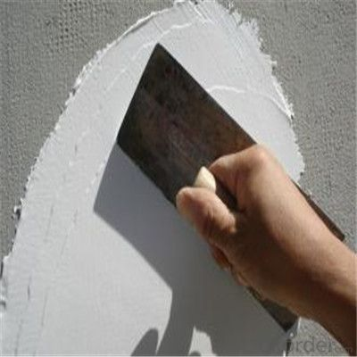 Stainless Steel Plastic Handle Paint Scraper/Putty Knife