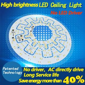 Ceiling light LED light source high brightness AC drive without driver