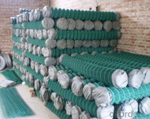 PVC Coated Chain Link Fence in High Quality