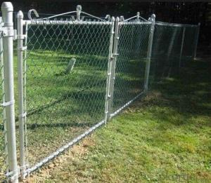 PVC Coated Chain Link Fence in Hot sales