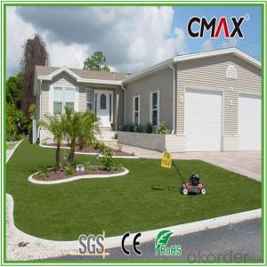 Backyard and Courtyard Decorating Carpet