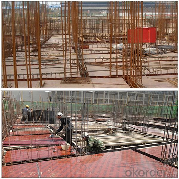 ZNSJ concrete formwork film faced plywood  15mm