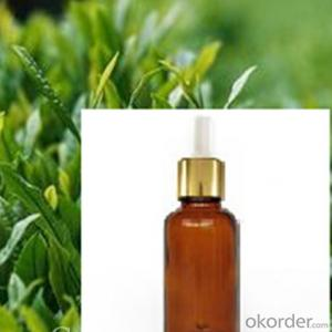 Pine Oil85% With Lower Price and High Quality and Strong Package