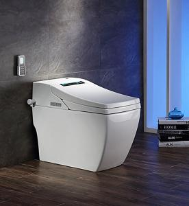 Efficiency Toilet  3200 Position adjustment Mobile drying