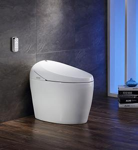 Efficiency Toilet  2300 Mobile drying Massage cleaning