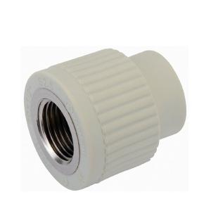 PPR Female Coupling PPR Fittings China Supplier