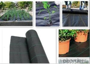 Woven Geotextile/Landscape Fabric/Groundcover