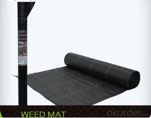 Woven Fabric/Anti Mat Fabric/Groundcover