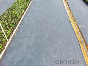 Woven Fabric/Anti Mat Fabric/Groundcover