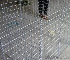 Welded Gabion Hot-Dipped Galvanized with Hihg Quality