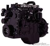 Auto Engine QSX15 Cummins Engine for Excavator