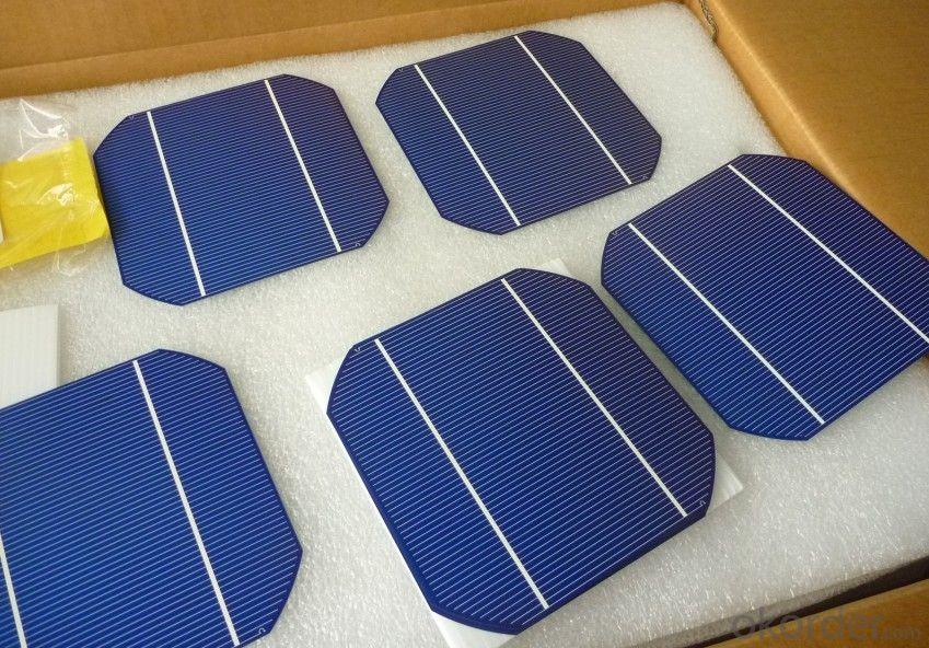 Buy Monocrytalline Silicon Solar Cells 156mm 14 00 17