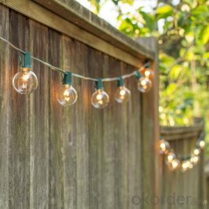 G50 Patio Globe String Lights with 25 Bulbs for Outdoor String Lighting (Black Wire)