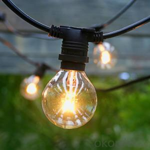 G50 outdoor Globe string light with 25 Bulbs for Decoration (Black Wire)