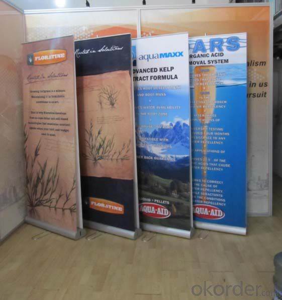 BST1-7 Double sides roll up banner stand /protable roll up banner stand /Adjustable banner stand
