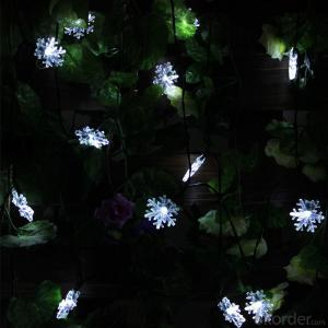 Hard Snowflake Solar Light String 5 Meters 20 Lights for Christmas and Party Decoration.