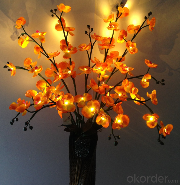 Buy Orange Led Artificial Butterfly Orchid Flowers With