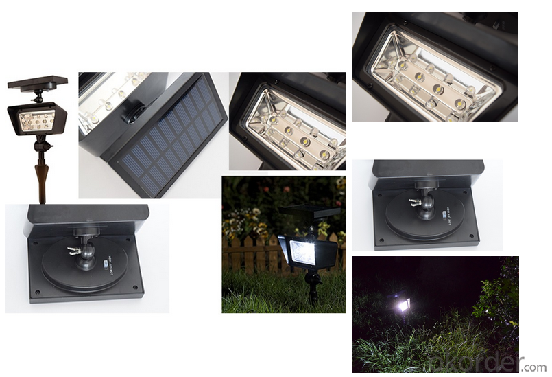 Outdoor Solar Spot Light Solar Power Hot Selling