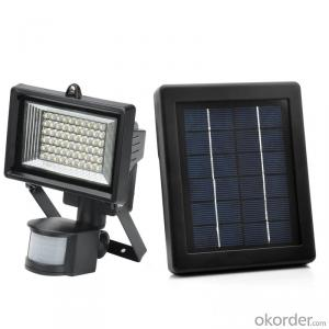 Solar Flood Light with Solar Motion Sensor