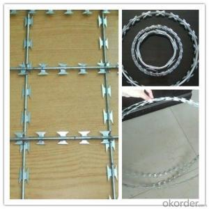 Security Fencing Razor Barbed Wire Fence with Factory Price