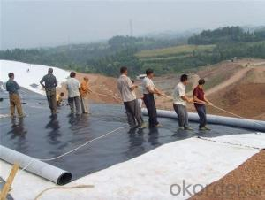 Geotextile Membrane for Sale With Factory Price