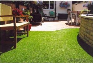 PET GRASS/ARTIFICIAL GRASS OF PET/THE BEST FOR PET