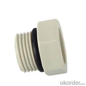 Polypropylene Random Plug-short with SPT Brand
