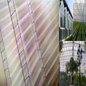 Hollow Polycarbonate Sheet/Hollow Polycarbonate Sheet
