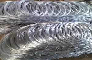 Hot DIP Galvanized Steel Wire for Garden