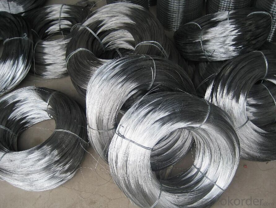 Galvanized Iron Wire In Coil With High Quality