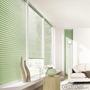 Custom Indoor Shangri-la Window Roller Blinds