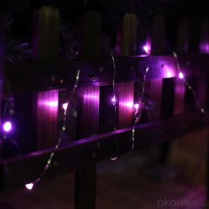 Pink Copper Wire Outdoor Led String Christmas Lights with Remote Control and Power Supply