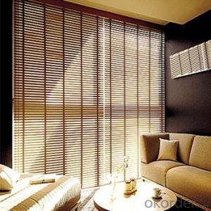 Double Remote Control Shangri-La Roller Blinds
