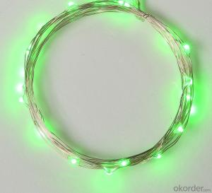 Green Copper Wire Outdoor Led String Christmas Lights with Remote Control and Power Supply