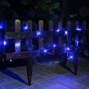 Blue Copper Wire Outdoor Led String Christmas Lights with Remote Control and Power Supply
