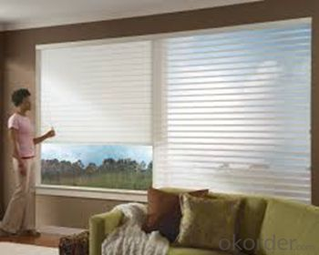 Buy Daylight Roller Blinds Roller Blind Office Curtains