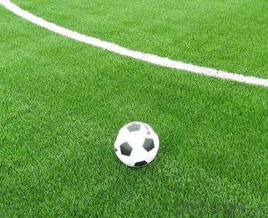 Outdoor Artificial Grass for Soccer Field