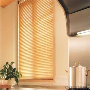 zebra window shades with zebra blind curtains