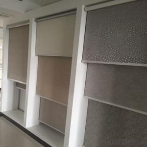 electric vertical blinds/aluminum roller shutter window