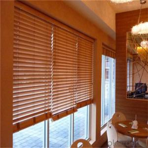 zebra window shades with zebra blind curtains