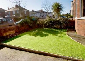 Artificial Fake Grass Outdoor and Indoor  Friendly  Hot Sell